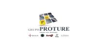 Proture